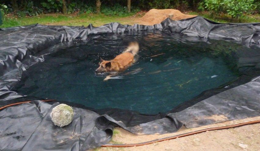 tinka zwemmen