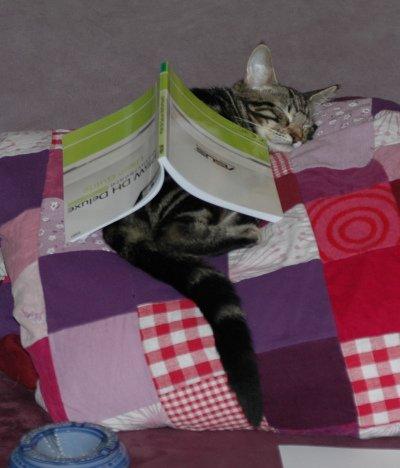 douwe studeert2