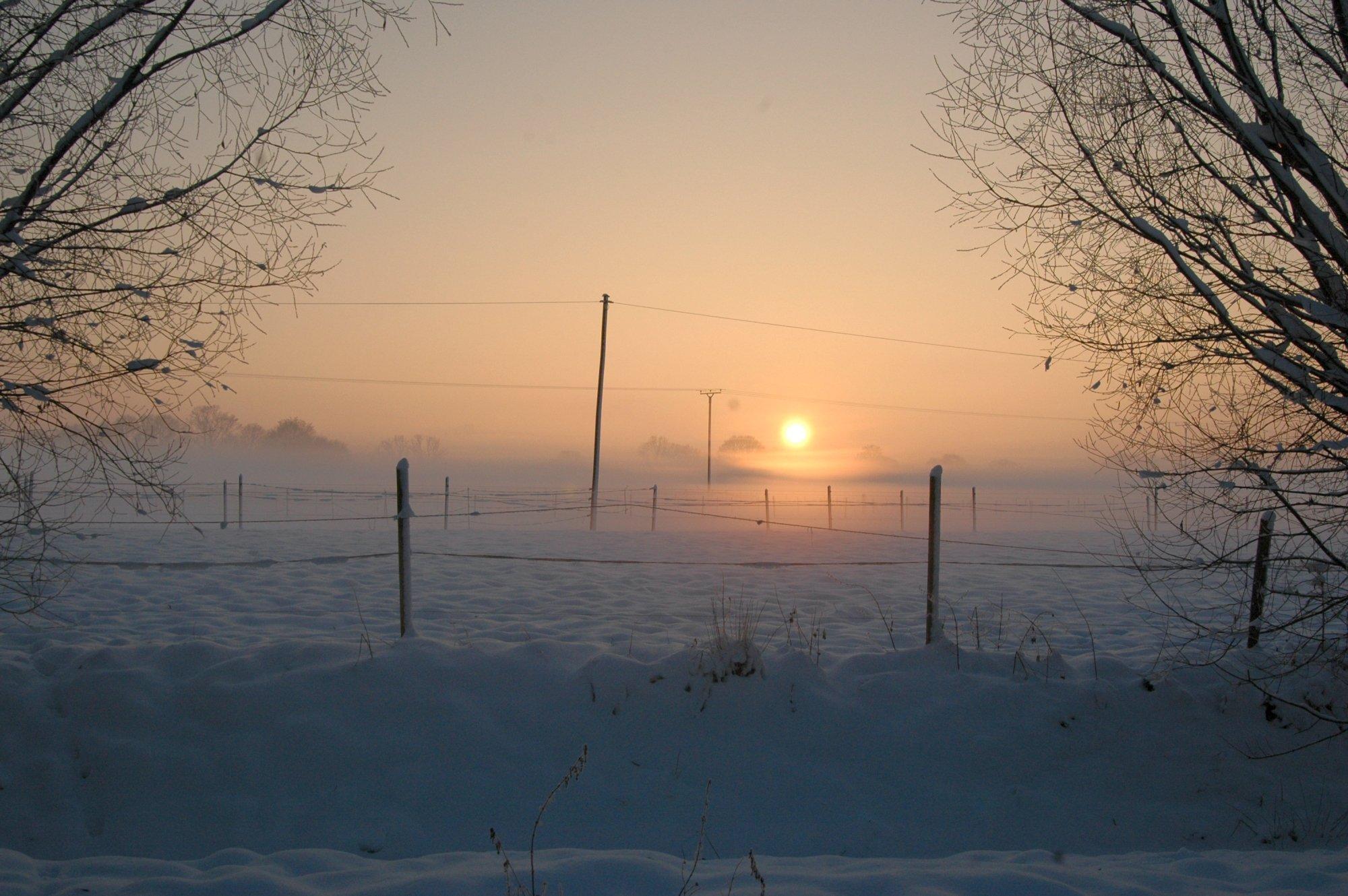 winterwonderlandt dec 2010 gr